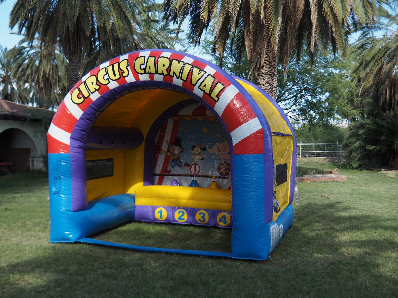 Carnival Air Ball Game