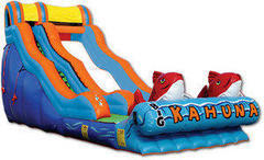 17Ft. Inflatable Big Kahuna water slide with stop pool