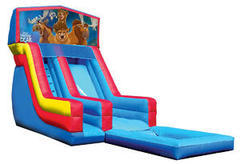 Z-Brother bear water slide