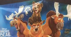 BROTHER BEAR PANEL