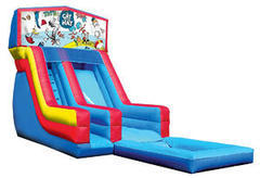 Z-Cat In The Hat water slide