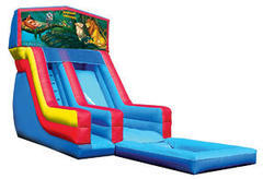 Z-Lion King water slide