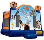 Looney Tunes Inflatable bounce house