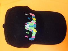 jump around party rentals cap