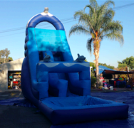 Dolphin Water Slide - Large