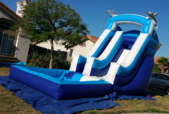 Dolphin Water Slide - Medium