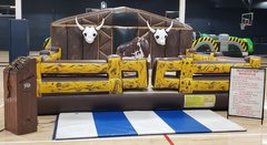 Mechanical Bulls