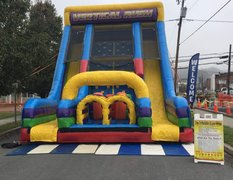 Vertical Rush Giant 24 Foot Double Slide
