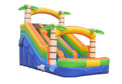 Adventure Island Dual Lane Water Slide