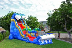 26ft. Shark Splash Slide