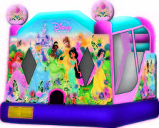 Disney Princess Slide Combo