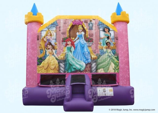 Disney Princess Bouncer