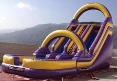 18ft Double lane 'Twin Tigers' Water Slide