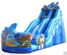 21ft Shark Water Slide