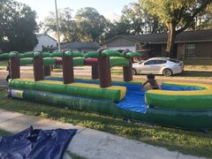 Slip and slide palm tree