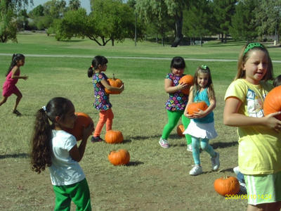 Kids picking their very own Pumpkins after visiting the Petting Zoo