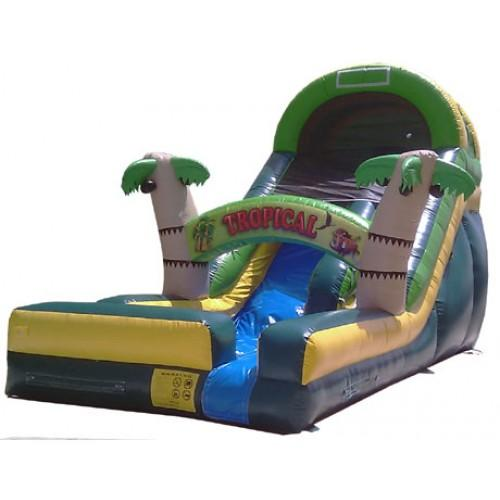 Tropical Wave Water Slide for your Luau