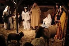 Living Nativity Animals 1hr min