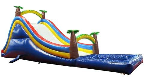 Palm Tree Slide with Pool
