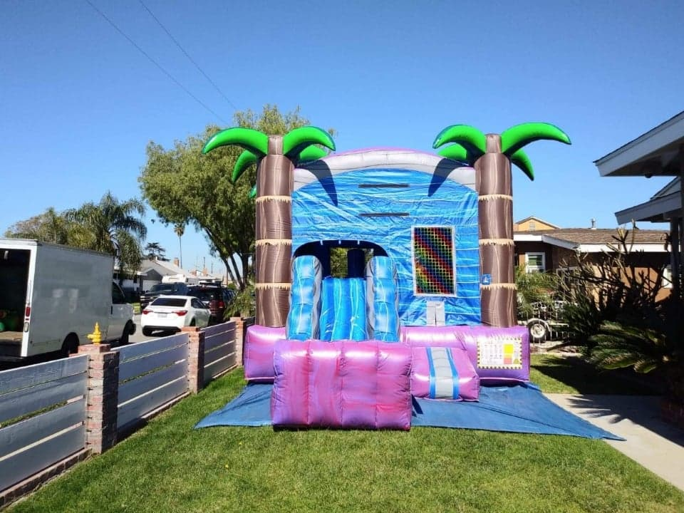 Tropical combo with Slide | Palm tree bounce house jumper Los Angeles