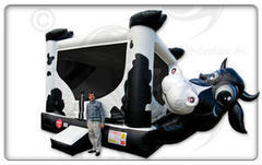 Belly Bouncer Cow   Buy or Rent It today!