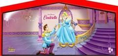 Themed Disney Cinderella Slide