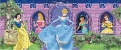 Themed Disney Princessess Slide