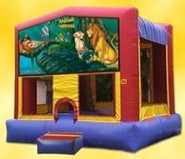 Themed Disney Lion King Jump15x15