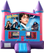 Harry Potter- 15x15 Pink