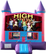 High School Musical 2- 15x15 Pink