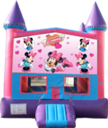 Minnie Mouse- 15x15 Pink