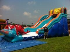 Big Kahuna  (Wet/Dry)Slide