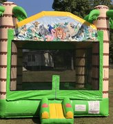 Tropical Plain Bounce House