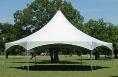 35' x 40' Hexagon High Peak Canopy