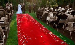 Red carpet 4'X25'
