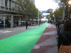 Green carpet 4'X50'