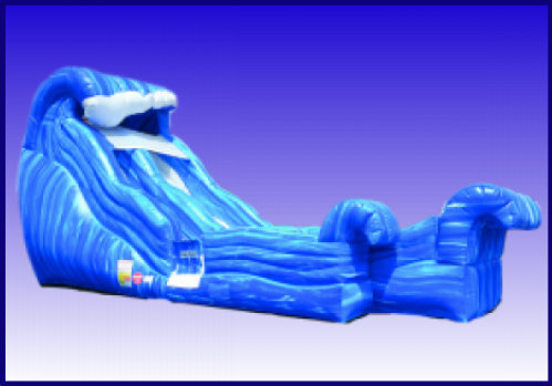 Wild Wave Jr. Water Slide