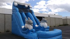 18' Dual Lane Dolphin Water Super Slide