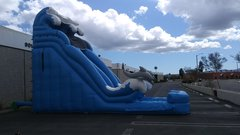 18' Dual Lane Dolphin super slide