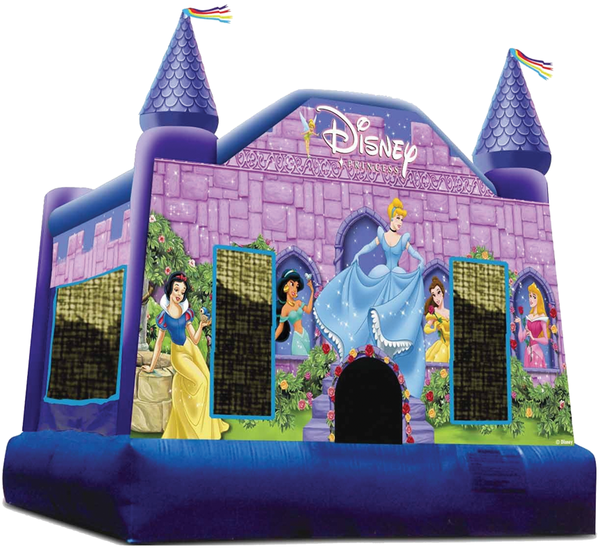 Disney Princess Deluxe from Awesome bounce of Michigan