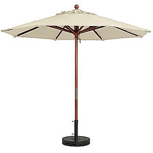 Market Umbrella, Ivory