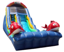18ft Fish Dry/Wet Slide