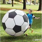 Super Sized Soccer Ball