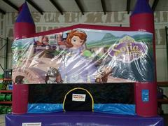 Sofia the First 15x15