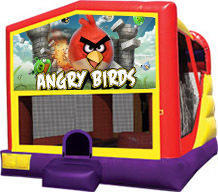Angry Birds Combo Waterslide