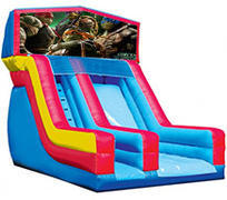 Ninja Turtles 18' Modular Dry Slide