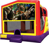 Ninja Turtles Combo Waterslide