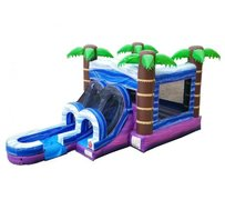 Tropical Castle Water Combo