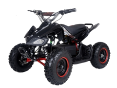 Kids ATV 4 Wheeler (Rental)