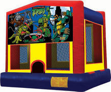 15 x 15 Teenage Mutant Ninja Turtles Moonwalk with Basketball Hoop